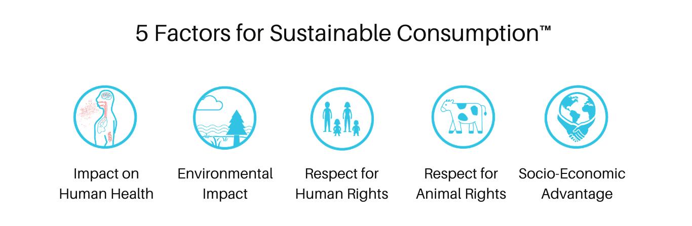 Five factors for Sustainable Consumption